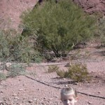 Fiona in front of the Hole in the Rock at Papago Park
