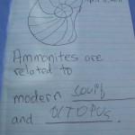 Fiona's notes taken at Dinosaur Ridge